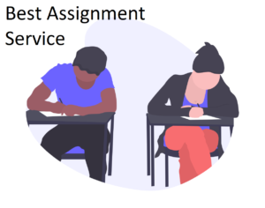 Best assignment service