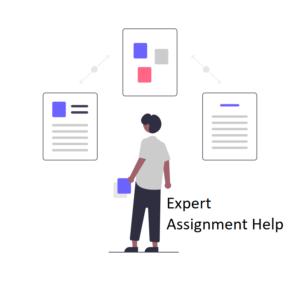 Expert assignment help
